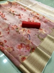 Organza Saree With Zari Woven Contrast Pallu