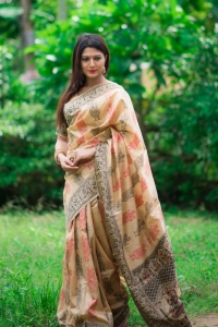 Tassar Silk Weaving Meenakari Saree